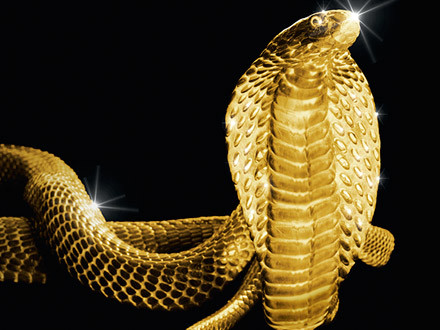 nexity-snake