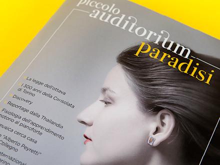 Piccolo Auditorium Paradisi Magazine 2014, particolare della copertina